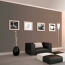 Go to Picture Hanging Systems now