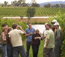 Last Minute Gifts from Red Balloon Days - Wine Tasting Tours