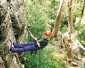 Abseiling, 2-3hrs - Central Coast, Sydney  from: AU80.00