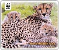 World Wildlife Fund Mouse Pad  from: USD$10.94