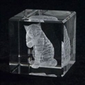 Crystal Impressions Cat  from: USD$55.00