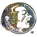 Florida State Seminoles Osceola Head Hologram Decal  from: USD$21.95