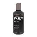 American Crew Tea Tree Shampoo  from: USD$9.00
