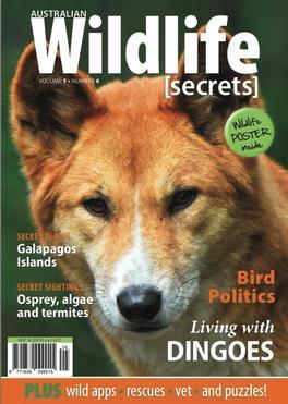 Australian Wildlife Secrets Magazine   from AU$55.00