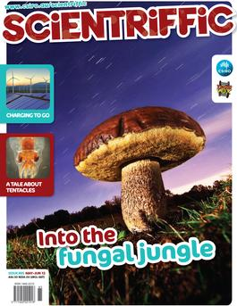 Scientriffic Magazine   from AU$33.00