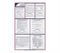 Wisconsin State Labor Law Poster  from: USD$39.99