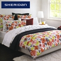 Sheridan Reversible Quilt Cover Set - Queen Size Bettina Strawberry  from: AU$179.95