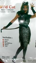 Wild Cat Costume  from: AU29.95