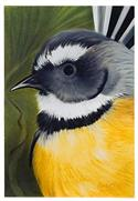 """Fantail Art Block, Large - Robyn Forbes "" from: NZ55.90"