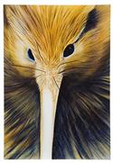 """Golden Kiwi, Medium Art Block - Robyn Forbes "" from: NZ27.90"
