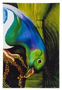 """Kereru Art Block, Large - Robyn Forbes "" from: NZ55.90"