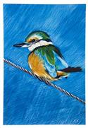 """Kingfisher Art Block, Large - Robyn Forbes "" from: NZ55.90"