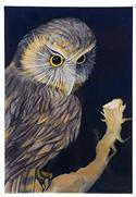 """Morepork, Medium Art Block - Robyn Forbes "" from: NZ27.90"