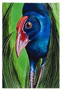"""Pukeko, Medium Art Block - Robyn Forbes "" from: NZ27.90"