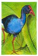"""The Pukeko, Medium Art Block - Robyn Forbes "" from: NZ27.90"