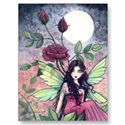 Night Rose Fairy Postcard  from: USD$1.70